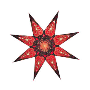 Weihnachtsstern Indian Star (60cm)