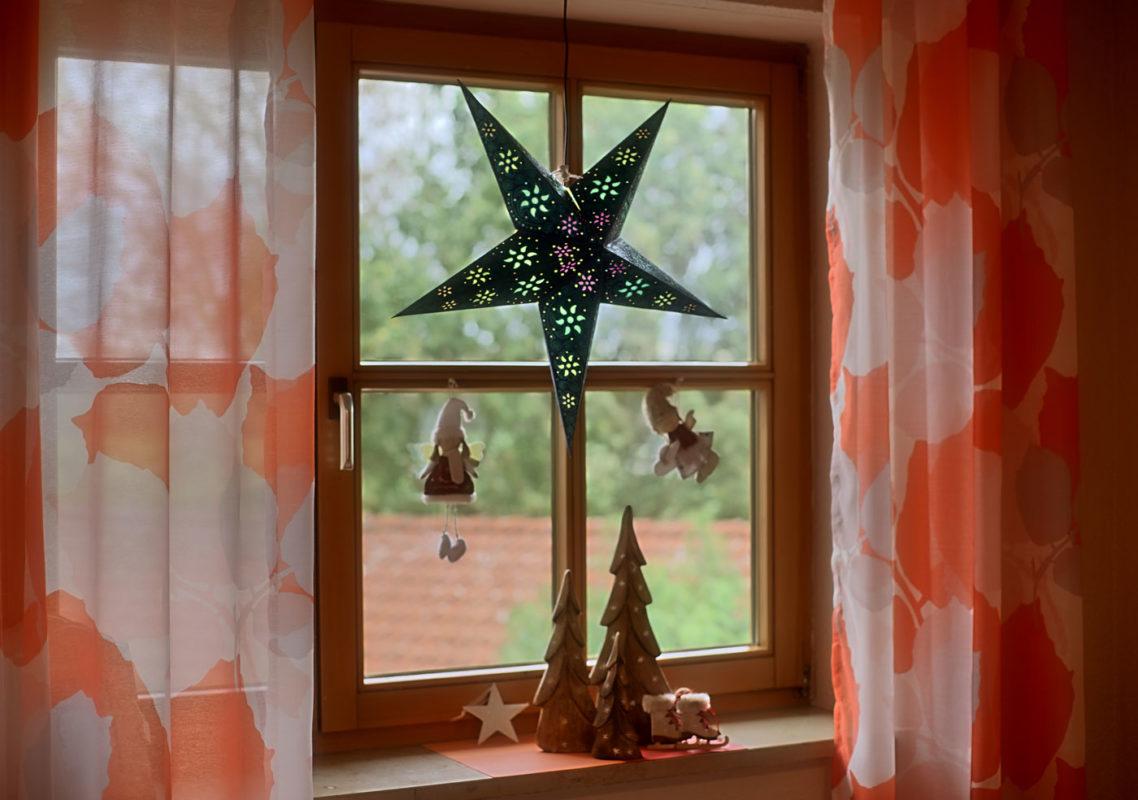 Weihnachtsstern Anubis (60cm) beleuchtet in weiss