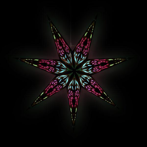 Weihnachtsstern Sumita black rust